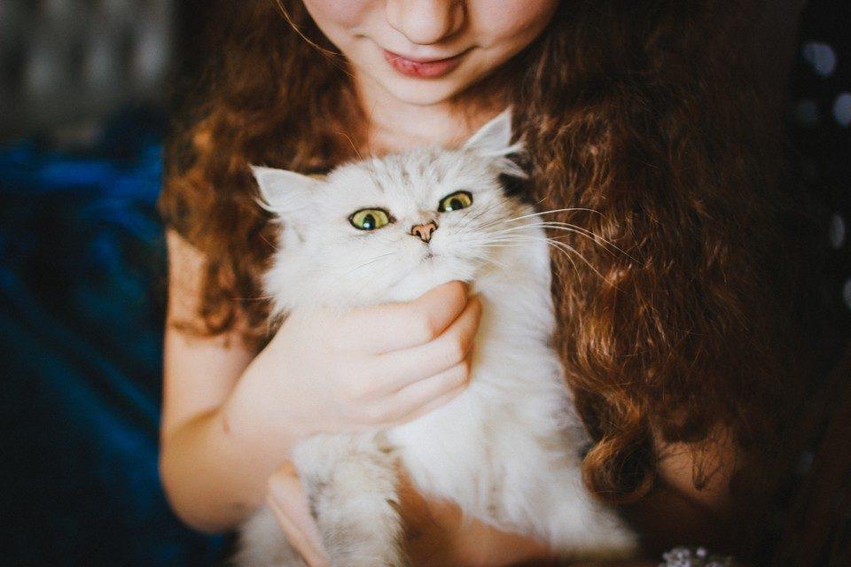 5 cadouri inedite perfecte pentru orice iubitor de pisici
