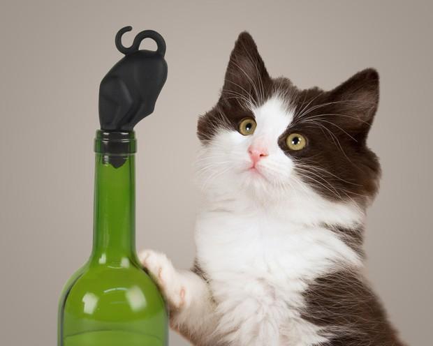 Dop pentru sticlă Stop Kitty